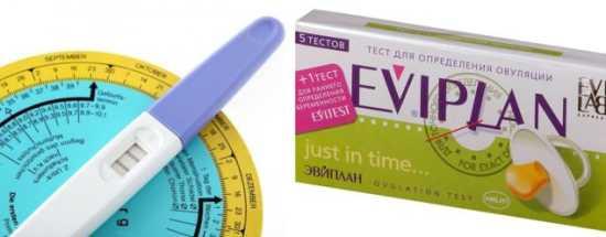'Действительно ли тест Eviplan помогает определить овуляцию