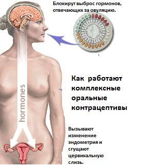 Схема - как работают оральные контрацептивы
