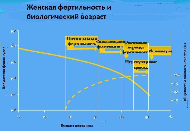 Фертильность и возраст - таблица