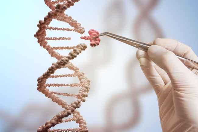 генетический дизайн детей при ЭКО