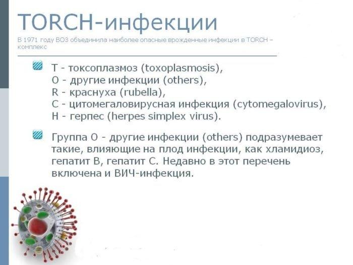 что такое торч-инфекции